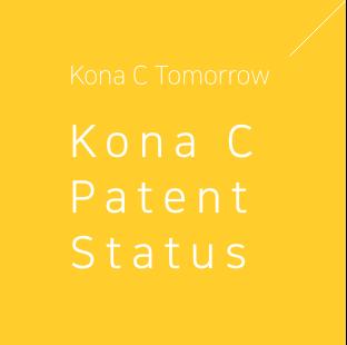 코나씨의 내일 코나씨 특허 현황